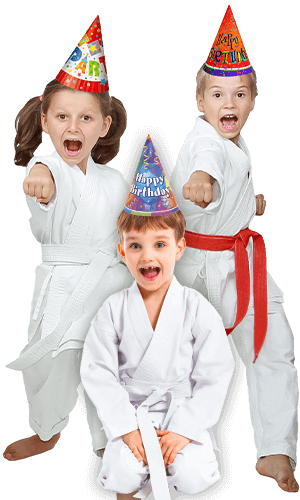 Martial Arts Birthday Party for Kids in Manahawkin NJ - Birthday Punches Page Banner